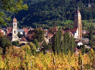 Village préféré des Français : pourquoi voter Arbois ?