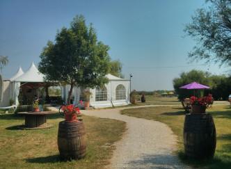 La Cabane des Frênes