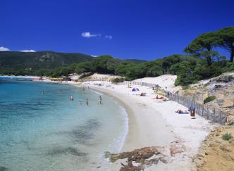Top 5 des plages paradisiaques à voir en France