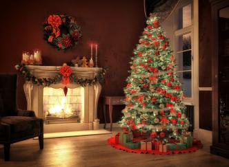 Les plus beaux sapins de Noël