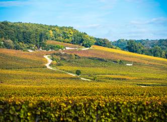 3 idées pour un petit road trip en France