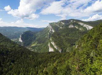 La vallée de la Drôme, du Vercors à la Provence