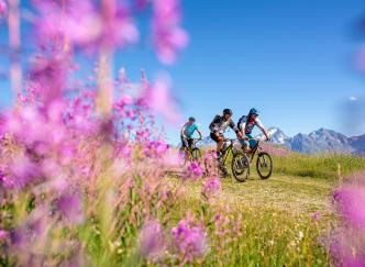 Un été à l'Alpe d'Huez