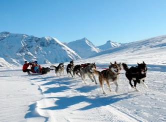 Alpi Traineau