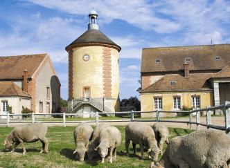 Bergerie nationale - Parc du Château