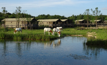 Parc d'attractions et parc animalier Le Pal