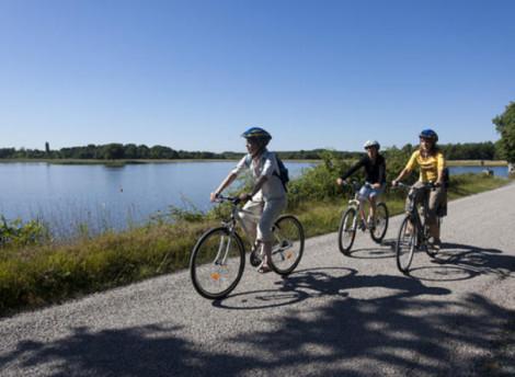 Les 16 circuits cyclistes du Parc naturel régional de la Brenne