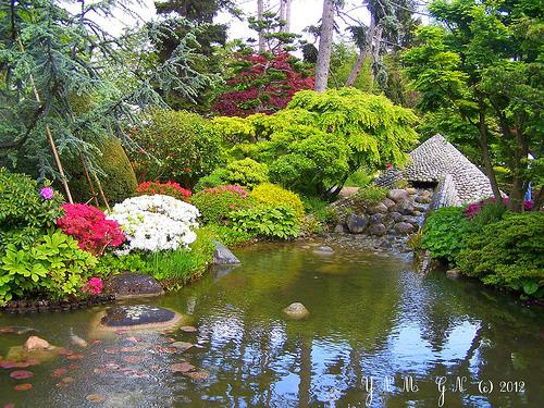 Jardin albert kahn boulogne billancourt - Jardin d eveil boulogne billancourt ...